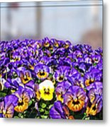 Standing Out In The Crowd Metal Print