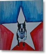 Star Appeal 3 Metal Print