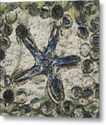 Star Of Longwood Beach Metal Print