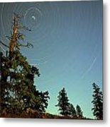 Star Trails, North Star And Old Douglas Metal Print