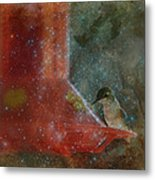 Stargazing Hummer Metal Print by Cindy Wright