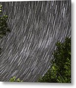 Startrails Above Tree Metal Print by Cristian Mihaila