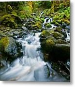Starvation Creek Falls Metal Print