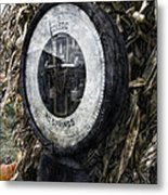 Steampunkin Scale Metal Print by Peter Chilelli