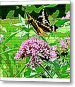 Stencilled Butterfly Metal Print