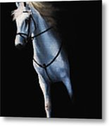 Stepping Into The Spotlight Metal Print