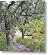 Steps Trail Metal Print