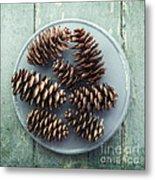 Stil Life With  Seven Pine Cones Metal Print