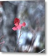 Still Amid Transition Metal Print