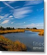Still Waters Metal Print
