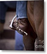 Stockhorse And Spurs Metal Print