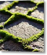 Stone Road With Green Moss Metal Print