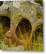 Stone Skull Metal Print