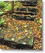Stone Stairway In Forest, Cape Breton Metal Print