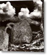 Stones And Roots Metal Print