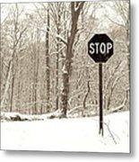 Stop Snowing Metal Print
