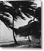 Storm Surge Metal Print by Omikron