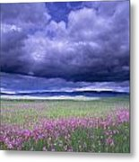 Stormy Clouds Approaching Field Of Metal Print