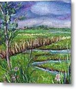 Stormy Wetlands Metal Print