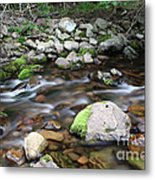 Stream In Nova Scotia Metal Print