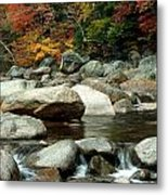 Streamside Color Metal Print