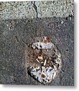 Streets Of Coronado Island  7 Metal Print
