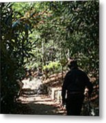 Stroll In The Shadows Metal Print