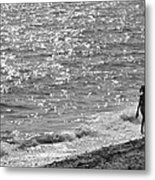 Strolling On Connecticut Beach Metal Print