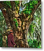Strolling With Giants Painted Metal Print