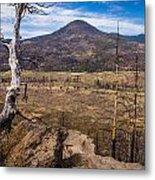 Studies On Sugarloaf Peak 3 Metal Print