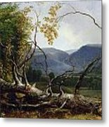 Study From Nature - Stratton Notch Metal Print