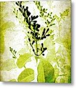 Study In Green Metal Print