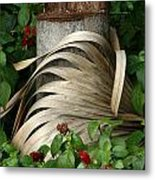 Stump And Fronds Metal Print