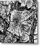 Stumped Metal Print by Mike McGlothlen