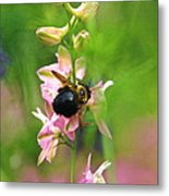 Such A Light Touch Metal Print