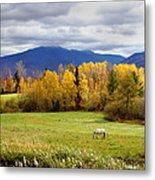 Sugar Hill Road New Hampshire Metal Print