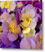 Sugared Pansies Metal Print
