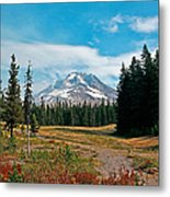 Summer At Mt. Hood In Oregon Metal Print