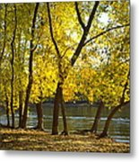 Summer At The River Metal Print