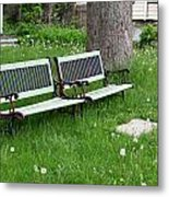 Summer Bench And Dandelions Metal Print