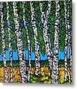 Summer Birches Metal Print