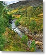 Summer Colour In The Glen Metal Print by John Kelly
