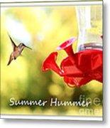 Summer Hummer Poster Metal Print