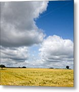 Summer In Saarland Metal Print
