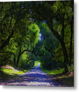 Summer Lane Metal Print