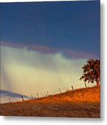 Summer Shower Metal Print