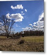 Summer Sky In The Fall Metal Print