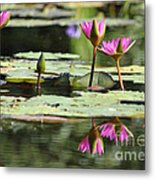Summertime Magic Metal Print