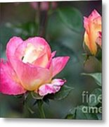 Summertime Sweetness Metal Print
