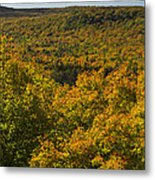 Summit Peak Autumn 10 Metal Print